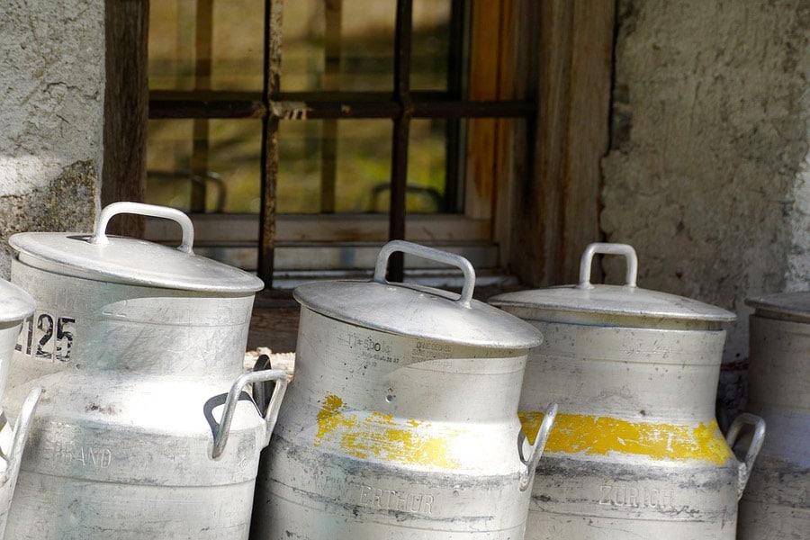 frische Kuhmilch in Kannen abgefüllt