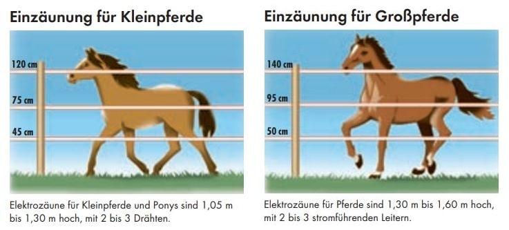 Pferdezaunhöhe Zeichnung